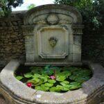 Les incontournables de l'été à Avignon