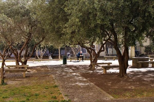 visite touristique d'Avignon